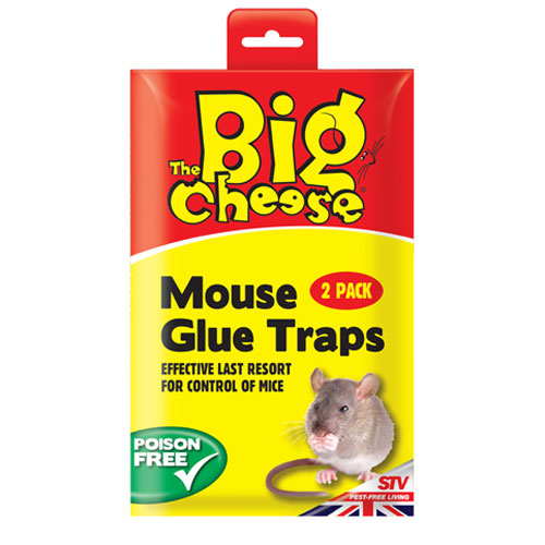 STV MOUSE GLUE TRAP 12X2